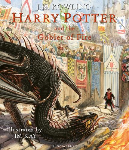 해리포터 컬러판 Harry Potter #4 : Harry Potter and the Goblet of Fire: The Illustrated Edition